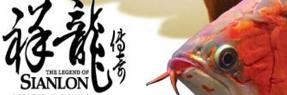 忻州水族批发市场|忻州水族馆|忻州龙鱼