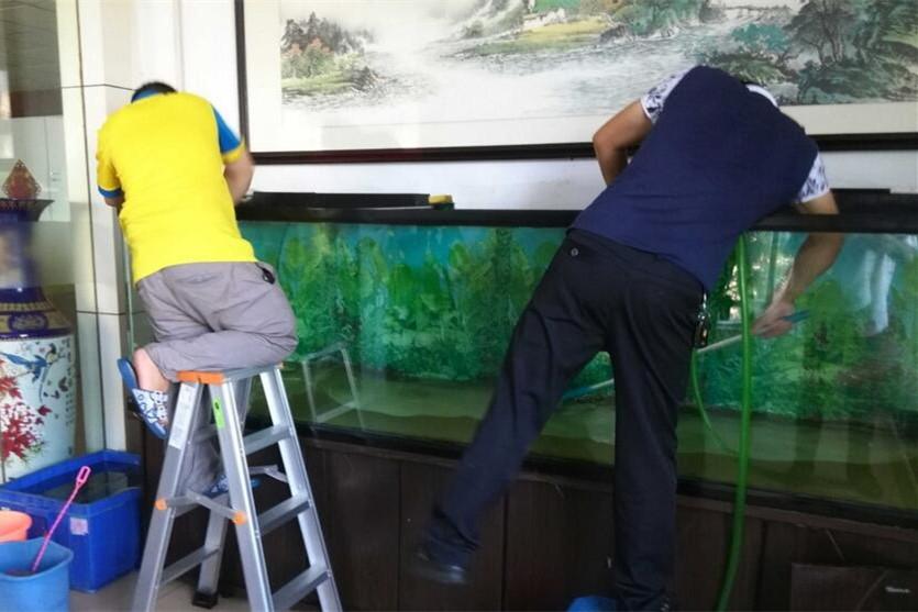 忻州上门鱼缸清洗维护服务